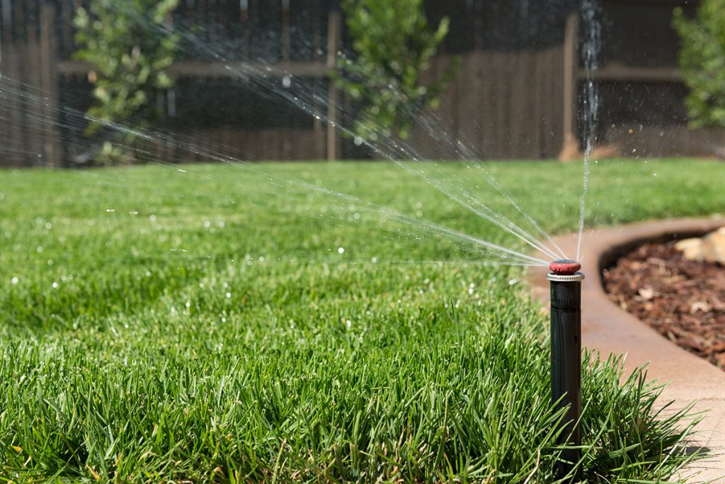 irrigazione